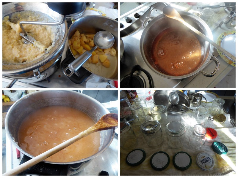 Quitten passieren, Mus und Saft kochen, abfüllen